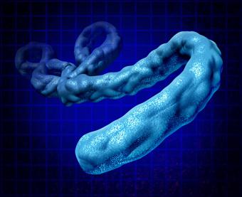 Ebola Threat